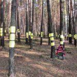 Maly Trostinez Vernichtungslager Belarus Minsk Weißrussland