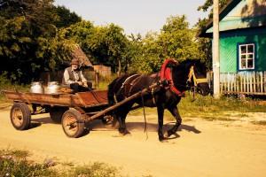 Mann mit Pferdewagen Belarus Weissrussland